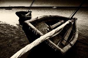 Lamu boats