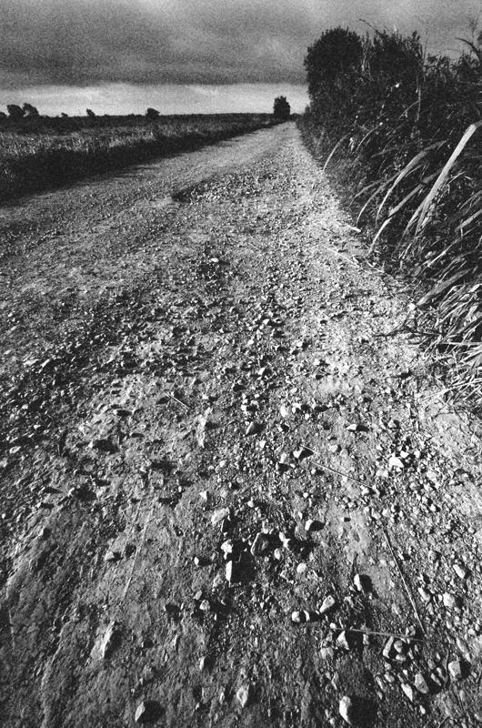 Track, Tadham Moor