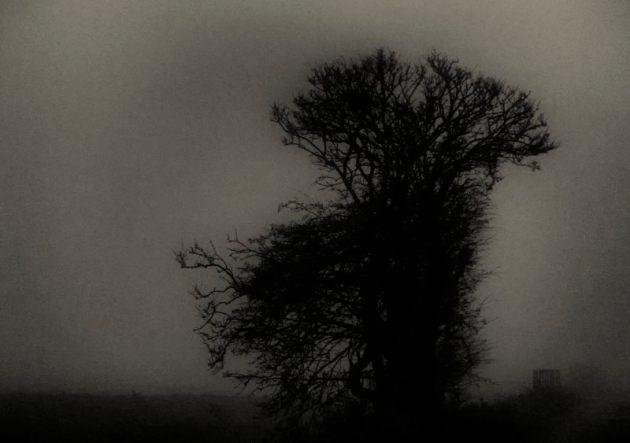 Fog, Tealham Moor 2