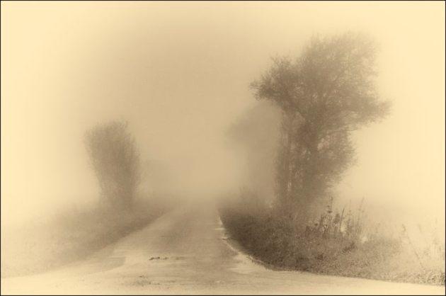 Fog on Tealham Moor