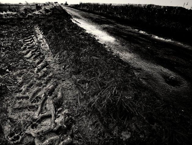 tractor-tracks-walton-drove-mono