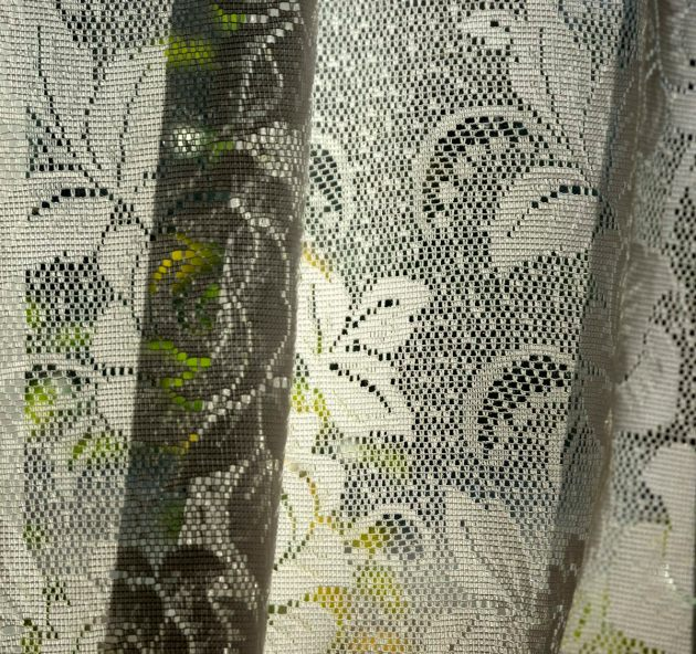 plant-behind-net-curtains