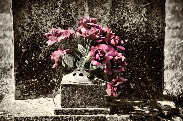 cemetery-1-roses-mono-colour-2
