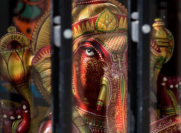 elephant-behind-bars