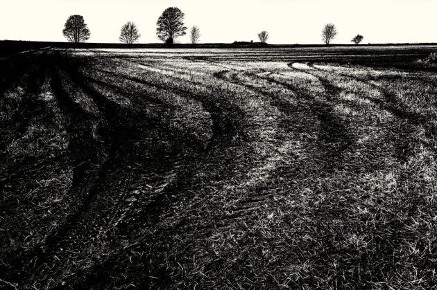 fields-beside-rushmead-lane-mono1