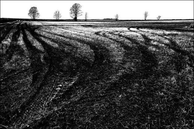 fields-beside-rushmead-lane-mono2